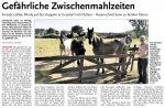 Laine-Nachrichten, 28.10.2016